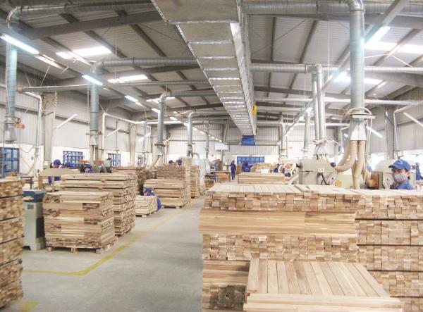 Xuất khẩu gỗ: Tăng trưởng mạnh, tiềm năng lớn
